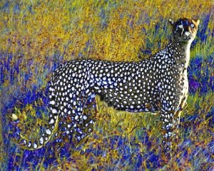 Ghost Cheetah ~ Philip Brent