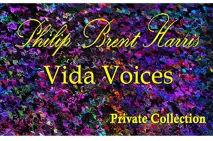 vida voices II