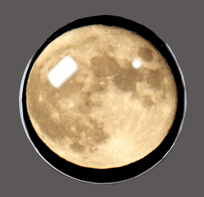Crystal Moon Future ~ Philip Brent Harris
